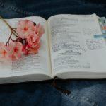 aromatherapy_english